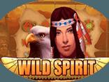 Игровой слот Wild Spirit